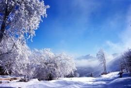 бизнес зимой