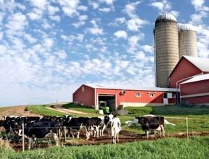 как открыть свою ферму