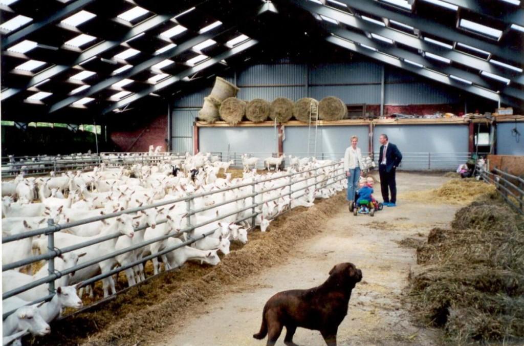 оборудование для  фермы